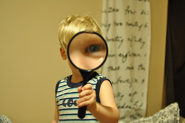 magnifying-glass-552852_640